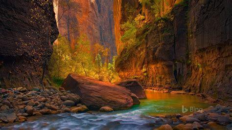 utah  virgin river  zion national park  bing
