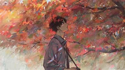 Anime Boy Autumn Tree Artwork Desktop Wallpapers