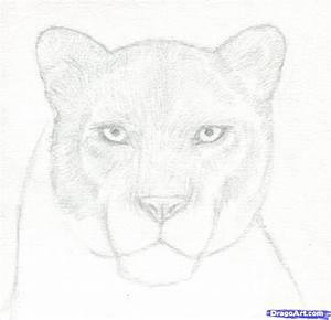 Black Leopard Drawing