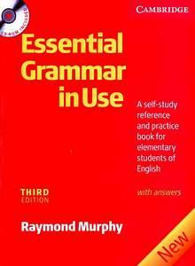 Essential Grammar In Use 3rd Edition