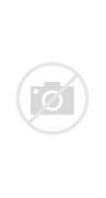 heather flower tat...