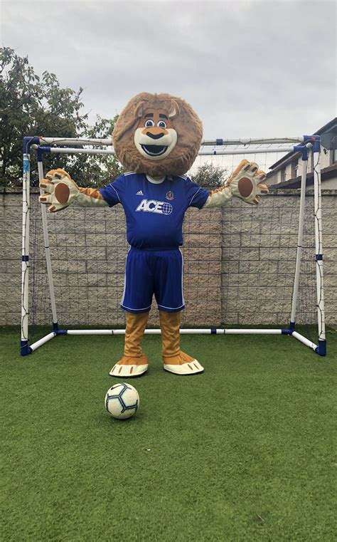CAN YOU COME UP WITH THE PURR-FECT NAME FOR COVE RANGERS ...