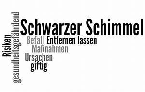 Schwarzer Schimmel Wand : schwarzer schimmel ursachen risiken gegenma nahmen ~ Whattoseeinmadrid.com Haus und Dekorationen
