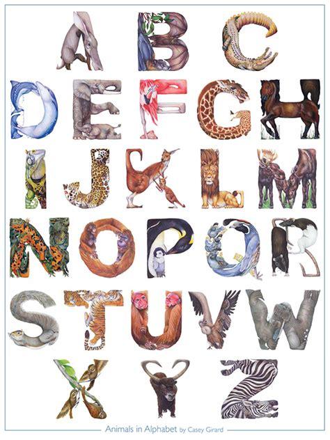 animals  alphabet poster  behance