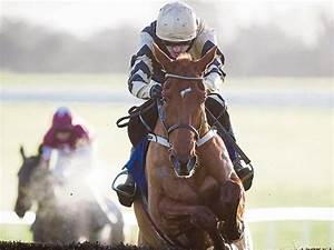 Elliott eyes Red Mills return for Gold Cup champion ...