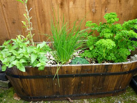 Inspirational Small Garden Ideas