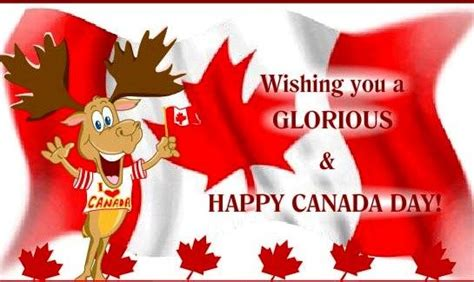 Funny Canada Day Pictures July Celebration