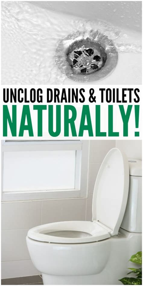 products to unclog toilet naturally unclog drains toilets the most viral collection of feel stories