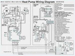 Trane Xe1000 Wiring Diagram Beamteam Of Trane Xe 1100