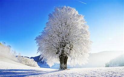 Winter Widescreen Wallpapers Landscape Nature Cool Idyllic