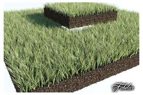 3ds max grass plugin download :: fracliciro