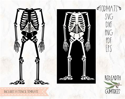 skeleton bones skeleton stencil template halloween skeleton shirt stencil template decal svg