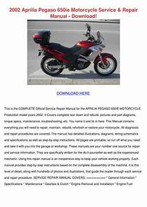 2002 Aprilia Pegaso 650ie Motorcycle Service By