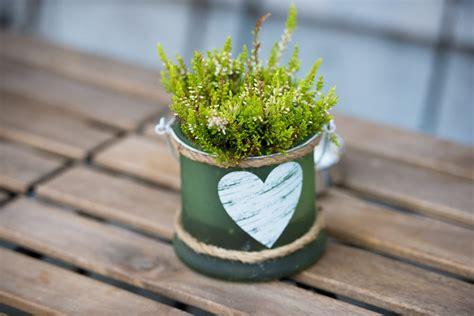 vaso piante come scegliere vaso piante non sprecare