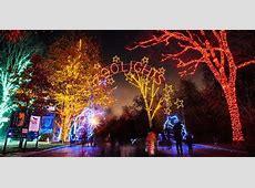 Washington, DC Area Christmas Light Displays 2017