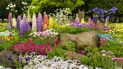 Terrasse Beet Anlegen by Blumenbeet Anlegen Wichtige Tipps Egarden