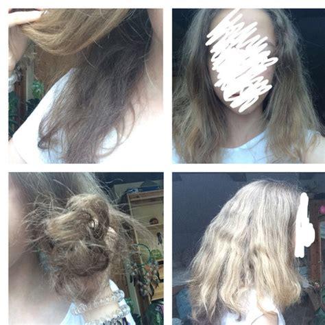 haare trocken und strohig strohige haare unterwolle trockene haare wie