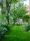 165 best images about Shade Gardens on Pinterest | Gardens shade garden path ideas