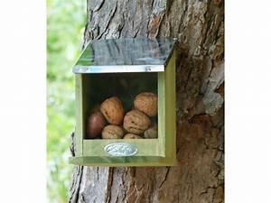 Eichhörnchen Aus Holz : futterhaus f r eichh rnchen ~ Orissabook.com Haus und Dekorationen