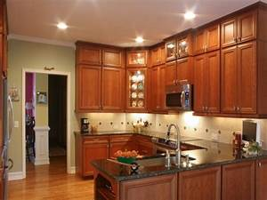 Remodeling existing kitchen cabinets kitchen for What kind of paint to use on kitchen cabinets for transparent sticker