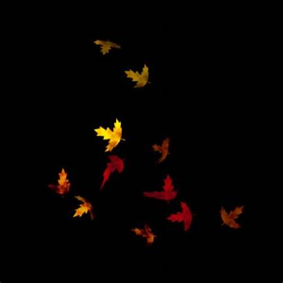 Leaves Background Animated Fall Backgrounds Wallpapers Cool