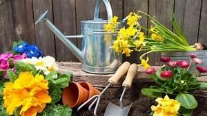 Gartenarbeit Im August : gartenarbeit im m rz was sie dar ber wissen m ssen ~ Lizthompson.info Haus und Dekorationen