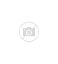 Terracotta Brick Pavers