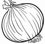 Onion Coloring Vegetable Cartoon Illustration Root Clipart Clip Object Vector Parsley Eps Popular Therapy Speech Gograph sketch template