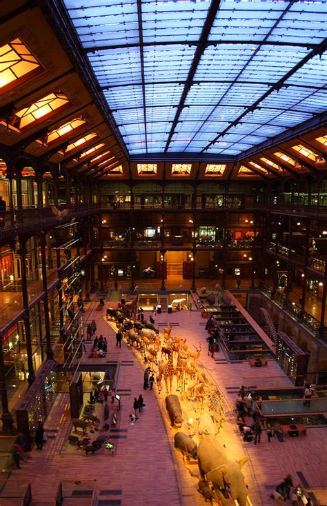 National Museum Of Natural History Paris France 011346