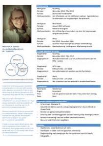 curriculum vitae format 2013 cv mei 2013 definitief