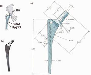 Total Hip Replacement Joint And Design Dimensions   A  A