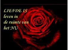 Liefde is muziek The Rose, WestLife YouTube