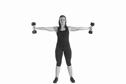 Exercises Dumbbells Upper Seated Dumbbell Cross Iron