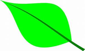 Apple Leaf Template - ClipArt Best