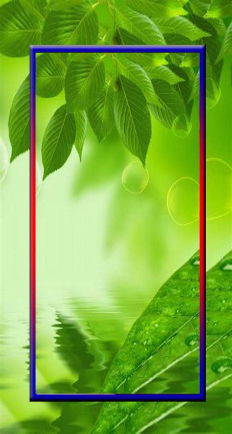 wallpaper daun hijau hd  android apk