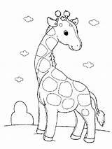 Giraffe Coloring Printable sketch template