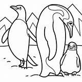 Coloring Basset Hound Popular sketch template