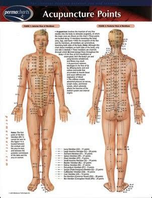 acupuncture b b si ge on pins and needles what in fact is acupuncture