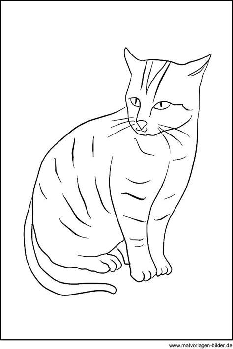 katzen zeichnung zum ausdrucken