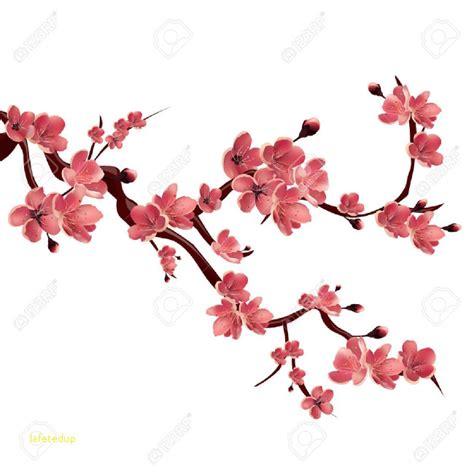 fleur de cerisier japonais signification nouveau cerisier