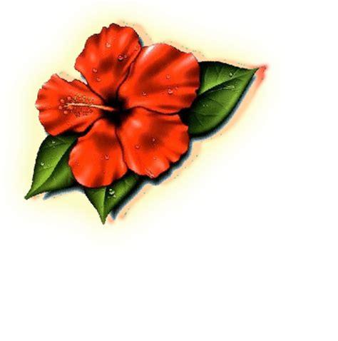 hibiscus flower design   clip art