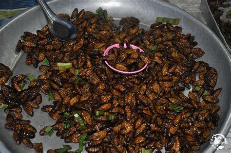 insectes cuisine insectes thailande evasions gourmandes