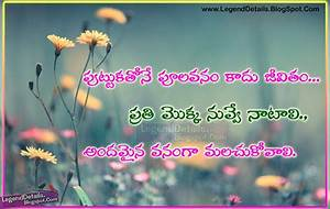 True Life Quotes Quotations Messages in Telugu Language ...