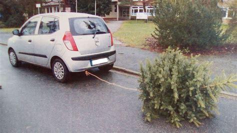 polizei stoppt kuriosen weihnachtsbaum transport auto