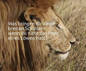 Was Für Ein Sternzeichen : spr che zum thema l we und l wen ~ Markanthonyermac.com Haus und Dekorationen
