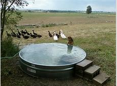 Galvanized Stock Tank Turned Into A Simple DIY Pool… Eco