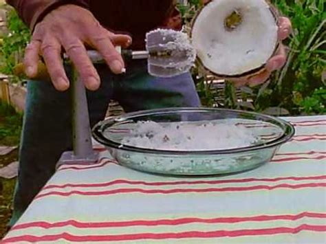 rotary coconut shredder machine aka coconut shredding