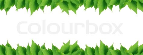 simple home plans green leaves border stock photo colourbox