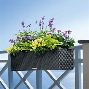 Balkonkästen Winterhart Bepflanzen : blumen arrangement im blumenkasten rattan lavendel lila ~ Lizthompson.info Haus und Dekorationen