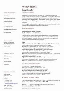 management cv template managers jobs director project With leadership resume template